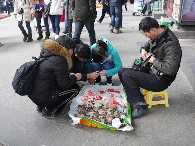 man selling wolf-dog teeth and heads in Chongqing