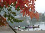 紅葉まっさかりの河口湖 2012-10-28T23:25:33.000Z