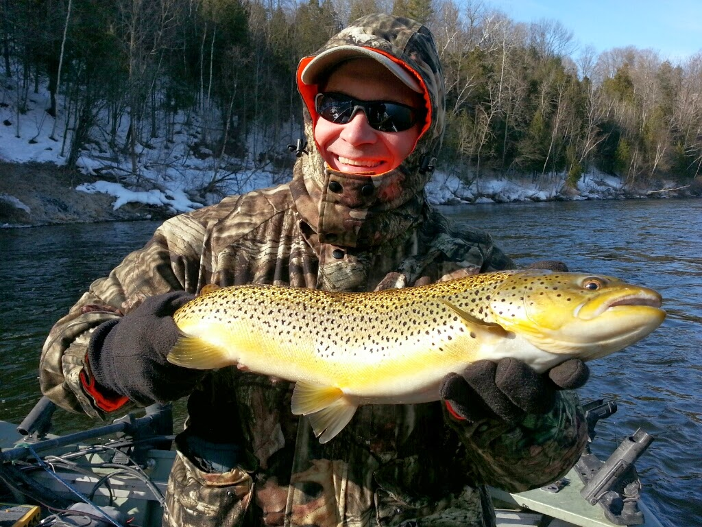 Muskegon River Brown Trout Fishing