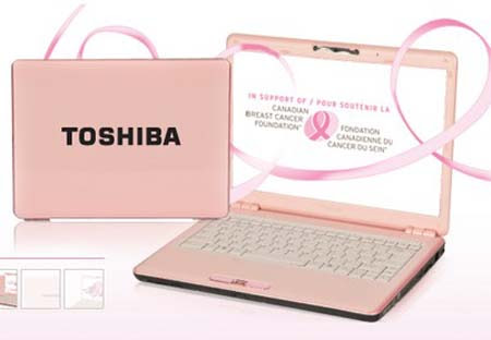 Toshiba Satellite M 800