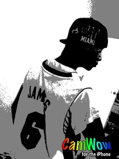 Air Jordan Photo 8
