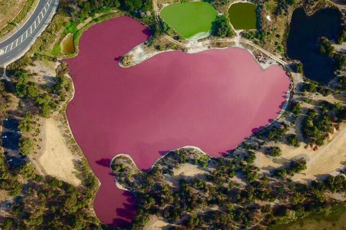 an aerial view of the pink lake in Port Melbourne.