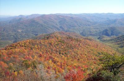 Mountain Foliage