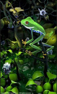 Blender 3d Treefrog and Dragonfly