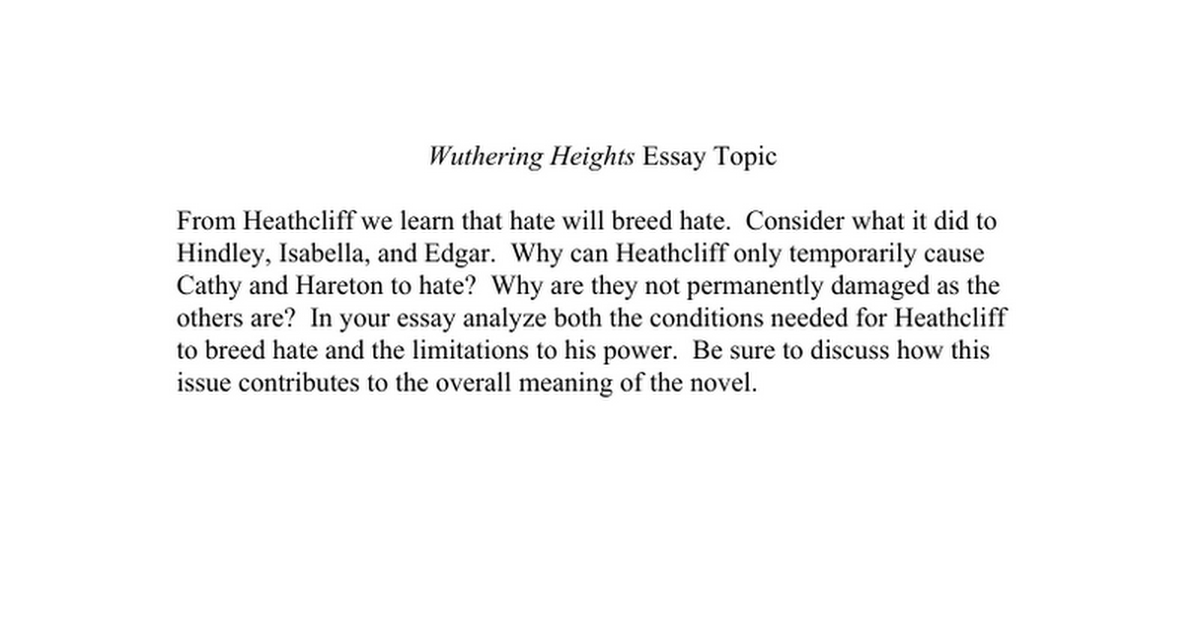 Argumentative Essays Example  Persuasive Essay On Environmental Issues also Supply Chain Management Essay Wuthering Heights Essay Topics  Google Docs Ptsd Essay