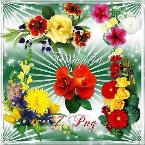 Клипарт в Png – Цветы отличного качества
