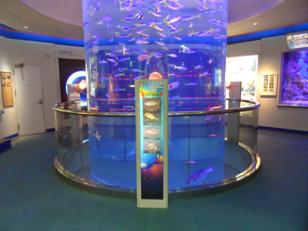 Violet cylindrical aquarium with fishes
