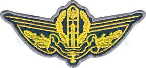 Державна прикордонна служба/повноколірна/нагрудна емблема