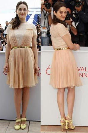Marion Cotillard at the photo call of the movie Rust and Bone