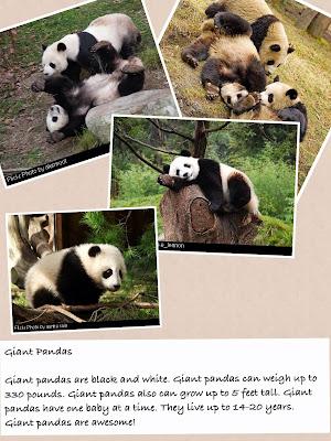 panda page 3