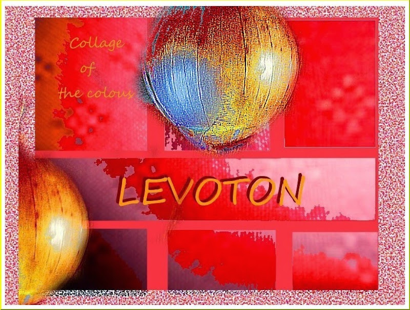 LEVOTON.jpg