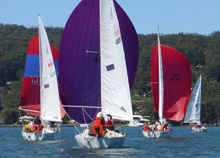 J/24s sailboats- sailing one-design in Australia