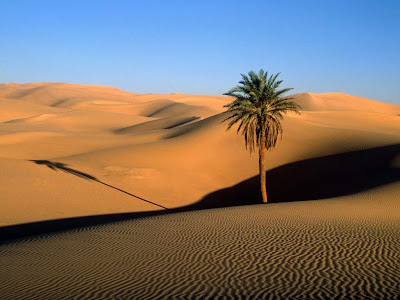 Sahara Desert Wallpaper