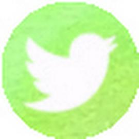 MucVeg auf Twitter folgen