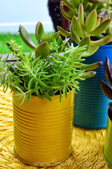 Aluminum Can Succulent Garden via SewWoodsy.com #LifeForLess #pmedia
