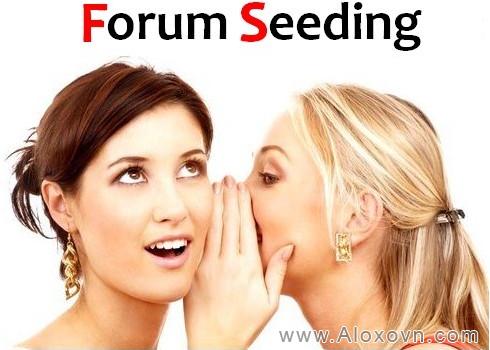 Dịch vụ Forum Seeding
