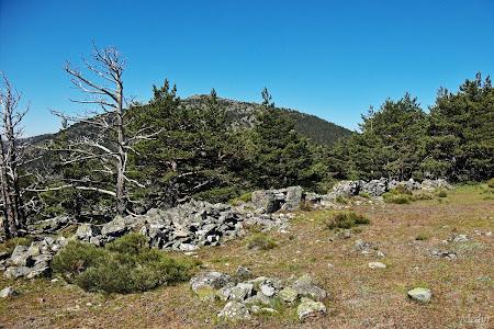 Trincheras cerro piñonero