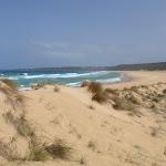 North Tura Beach from dunes (107050)