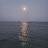 Mahmoud Dahroug avatar image