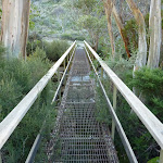 Crossing the western Thredbo River bridge (284243)