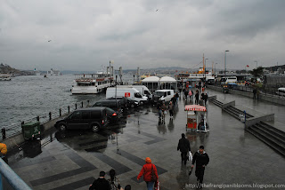 Bosphorus Rainy Day