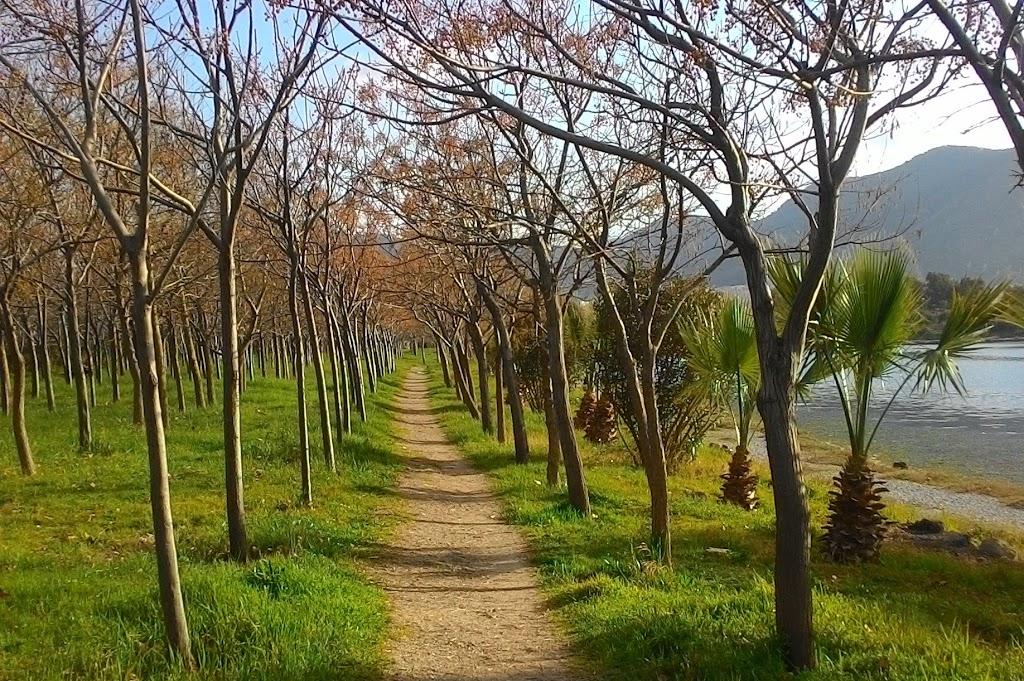 İnciraltı Kent Ormanı