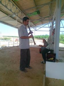 Jericho - הכולל של יריחו בבית הכנסת נערן