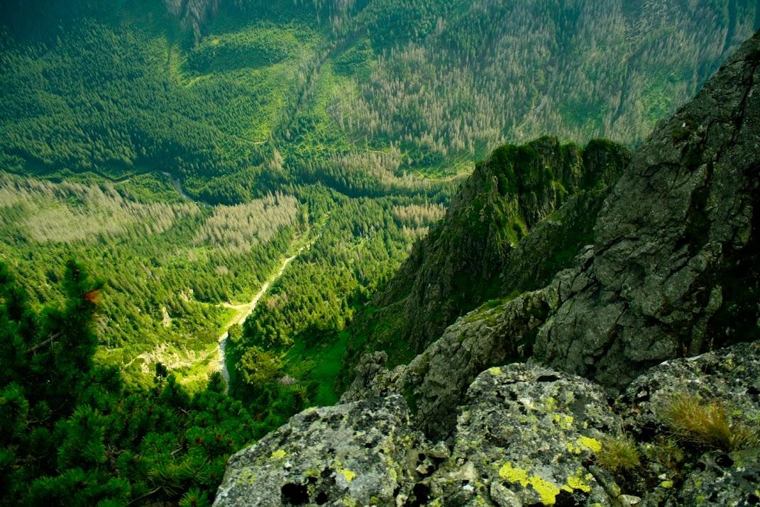 Widok z Małego Młynarza na Dolinę Białej Wody