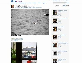 Flickr Photostream preview