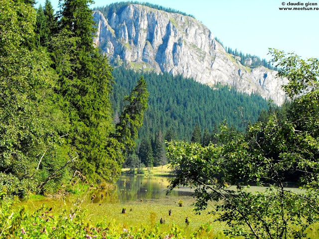Suhardul Mic şi Lacul Roşu