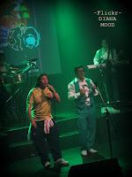 Los Mirlos 2012-04-11
