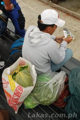Passenger with bought vegetables