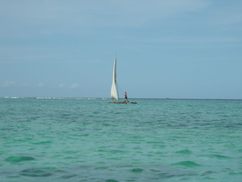 Zanzibar salı