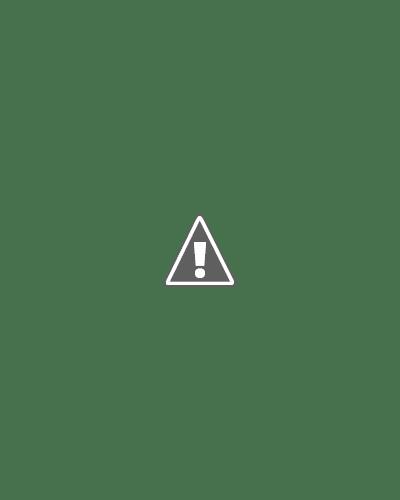 10 chiếc váy cưới công chúa cho cô dâu xinh đẹp