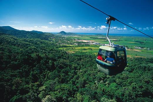世界最古の熱帯雨林キュランダ/イメージ