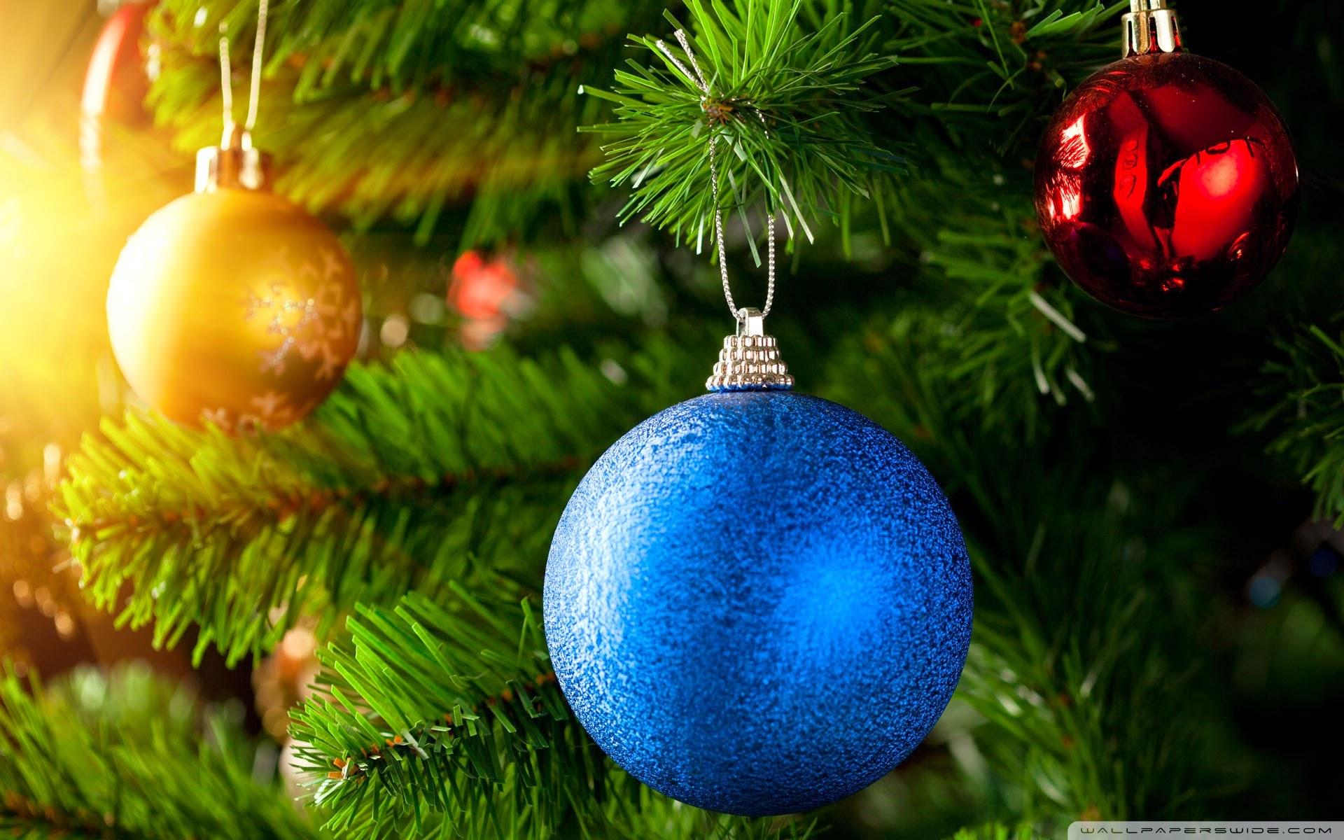 Natal-(4)