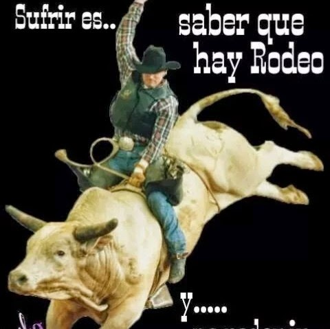 Bull Rodeo Live Wallpaper Apps En Google Play