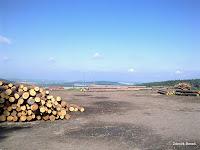 Bambousek - výhled na Plzeň