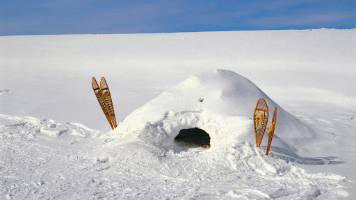 Snow Shelter, Dodge Nature Center, Mendota Heights, Minnesota.jpg