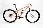twohubs 650b belt drive pumpkin single speed complete bike
