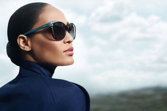 fendi_sunglasses_2013_campaign_fall_winte