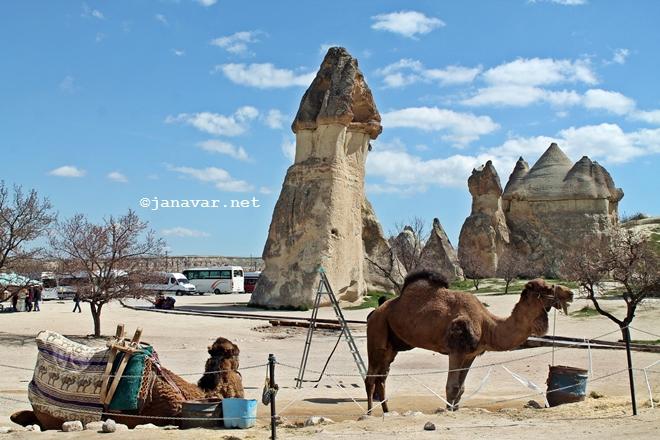 Paşabağ Valley in Cappadocia