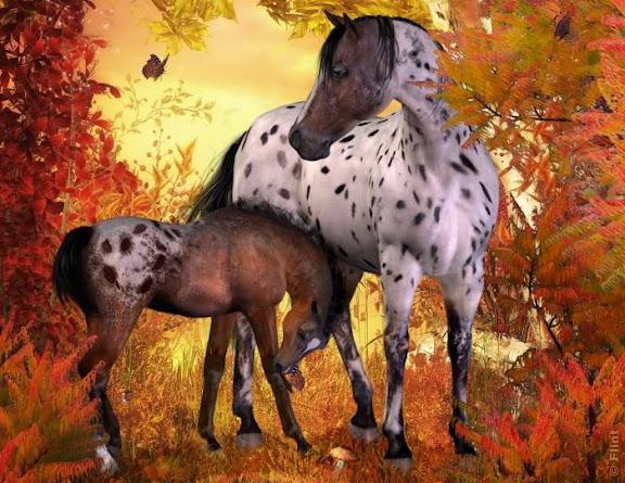 autumnhorses.jpg
