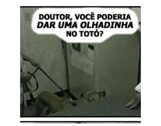 doutor-da-uma-olhadinha-no-toto-escola-veterinaria