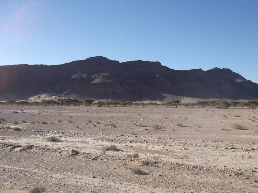 marrocos - Marrocos e Mauritãnia a Queimar Pneu e Gasolina - Página 10 DSCF1229