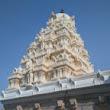 Avinash_V