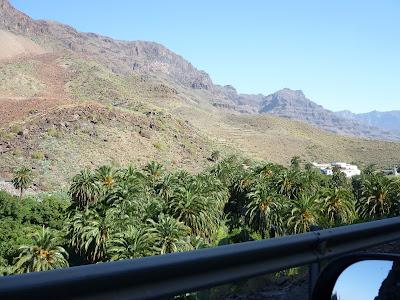 Palmenplantagen bei Fataga