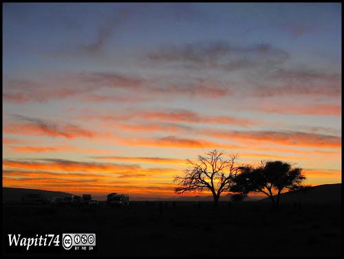 Balade australe... 11 jours en Namibie - Page 2 IMG_0761
