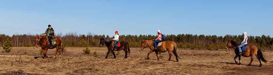 Конные прогулки на свежем воздухе.