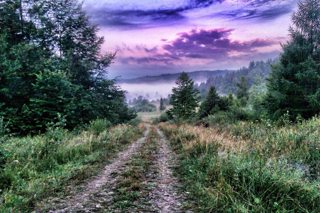 Кузьмин Михаил ,HTC wildfire S , Snapseed  Львовская область